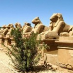Ancient Egypt Facts For Kids   Unknown Facts about Ancient Egypt