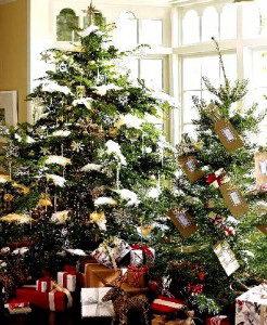 Christmas Tree - christmas facts for kids