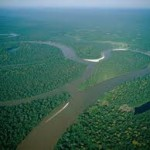 Amazon River Facts For Kids | The Second Longest River