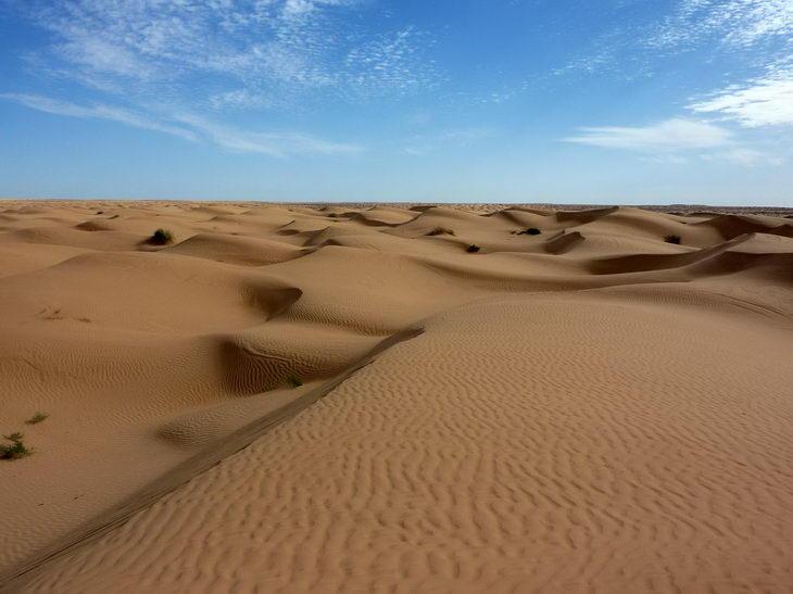 desert information for kids