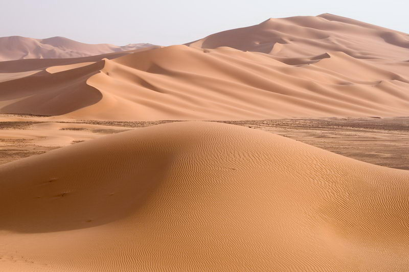 Sahara Desert Facts For Kids | Hottest Desert Of The World