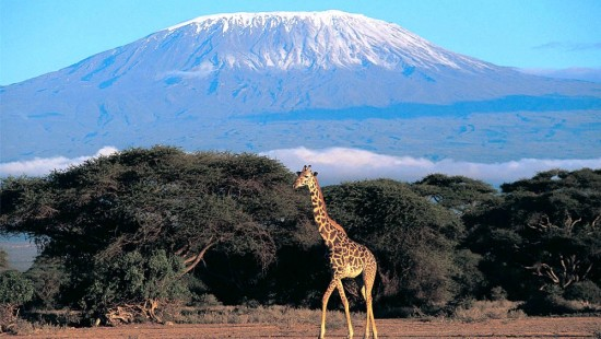 mount kilimanjaro facts for kids