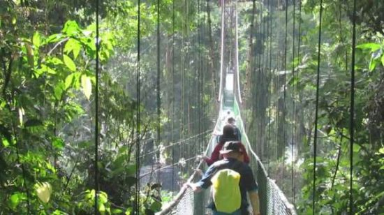 Tirimbina Forest Reserve - costa rica facts for kids