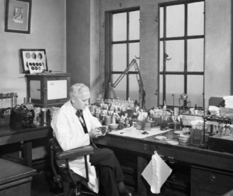 Fleming at work in his Lab