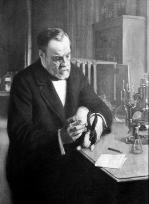 Pasteur experimenting on rabbit